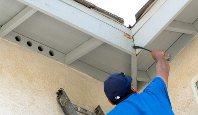 Water damage and fungus in fascia boards