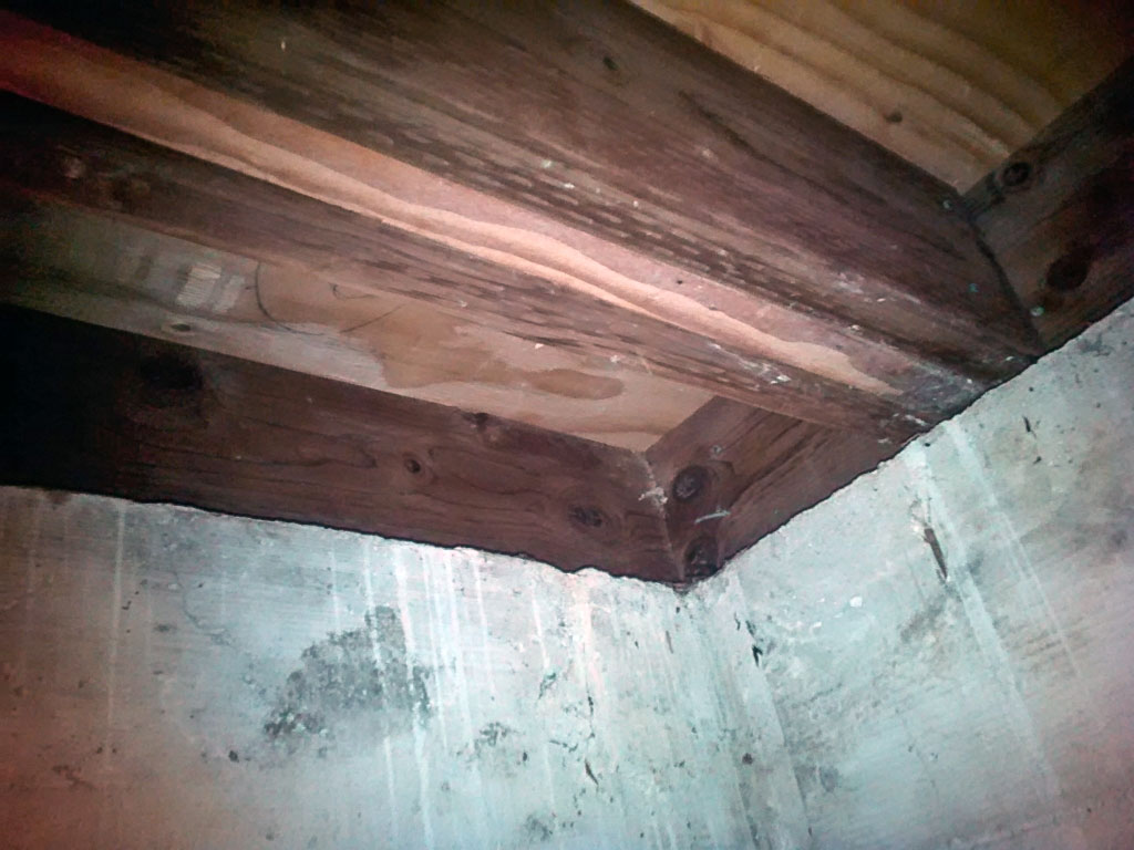 Sub-floor and floor joists repaired after water damage.