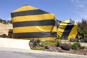Home fumigated for termites