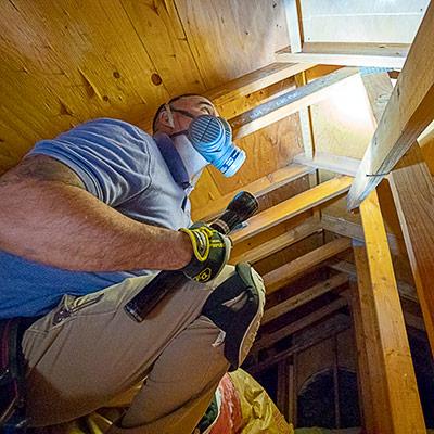 Termite Inspection Ventura County