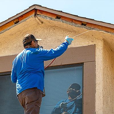 Santa Termite Spraying