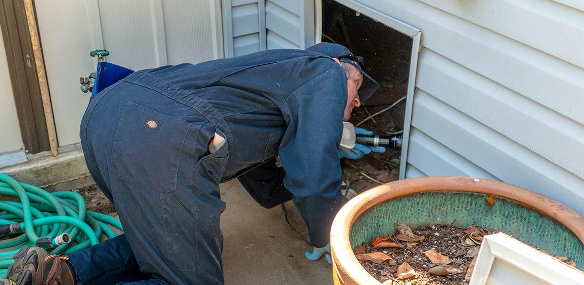 Ventura Pest Inspector
